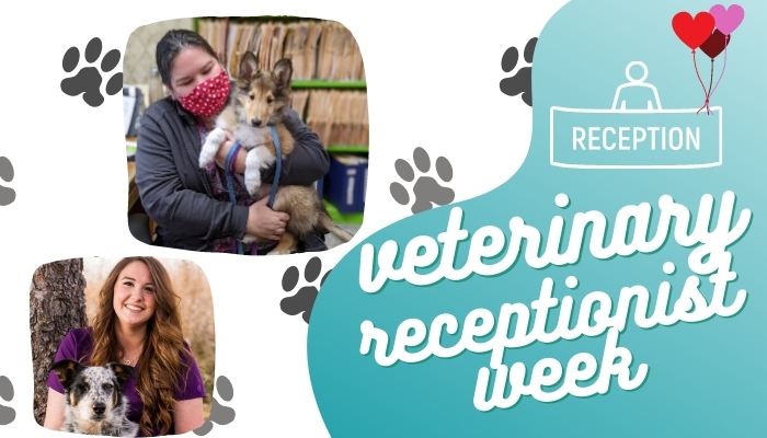 veterinary receptionist week