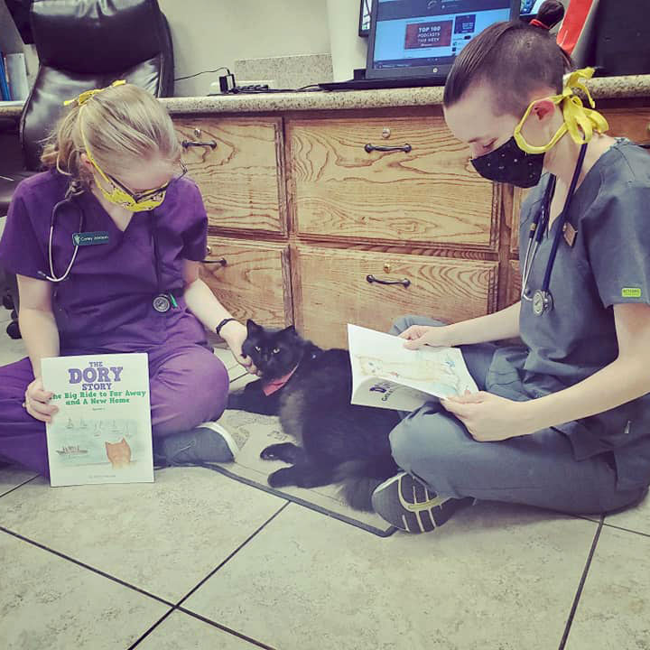 Denton TX Cute Concierge Appointment - Cat Story Time