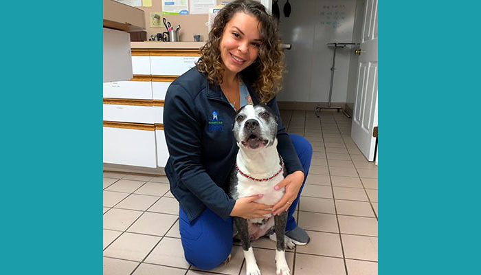 Meet Melissa: Once a Vet Tech, Now a Hospital Manager