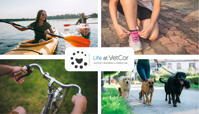 Take Advantage of the Life at VetCor Wellbeing Rewards Program