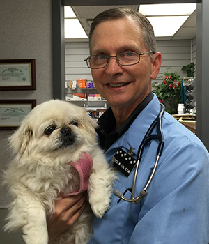 Dr. Bruce Cox and a canine friend at Northside Animal Hospital